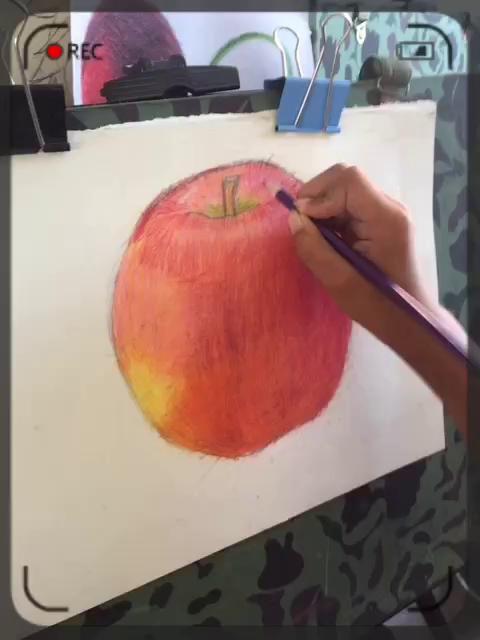 毛毛虫画室学生彩铅画作品