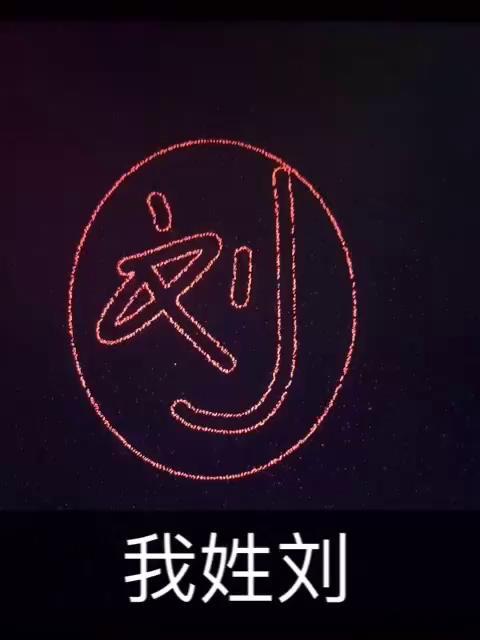 我姓刘,却留不住你远行的心.